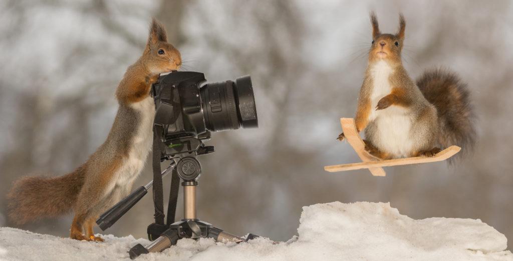 冬のアルバイト カメラ