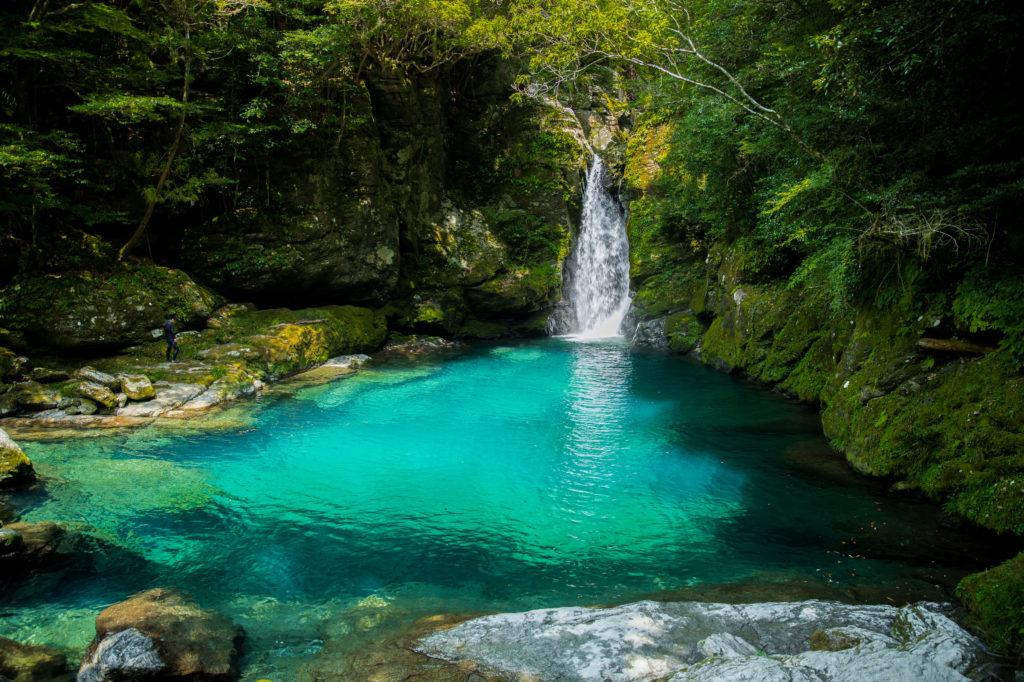 高知県のリゾートバイト