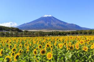 富士山山梨リゾートバイト
