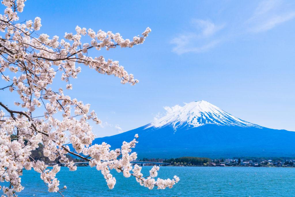 富士山でのバイト