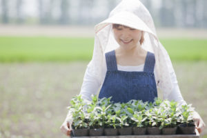 農業の求人アルバイト