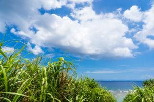 離島の人気バイト