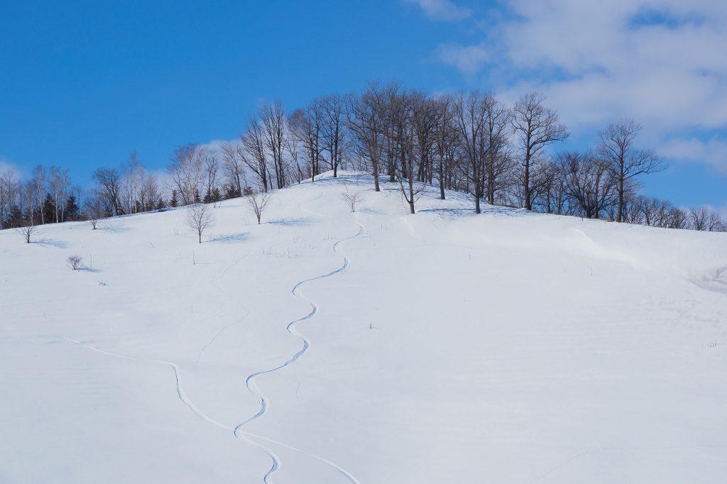 パトロールのスキー場バイト