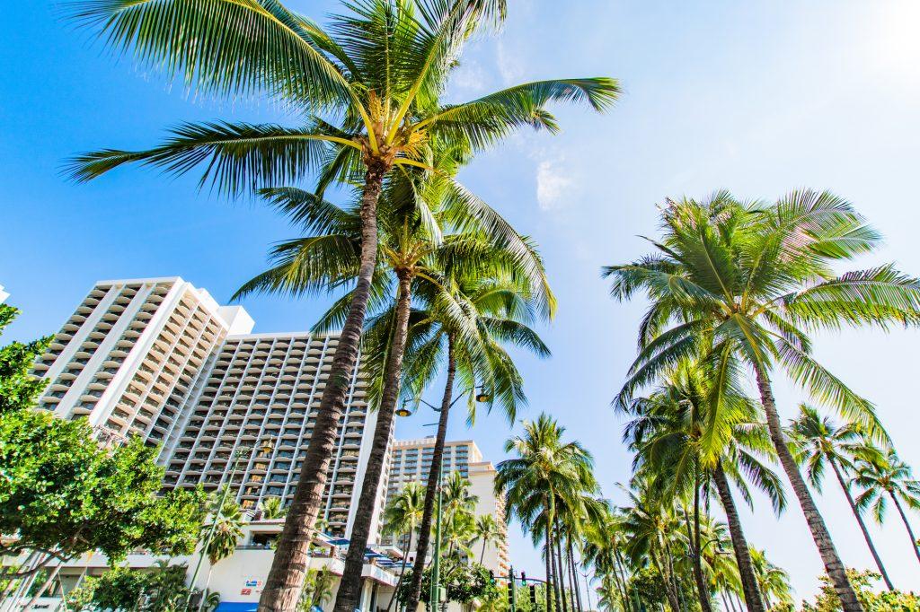 沖縄 ホテル 住み込み