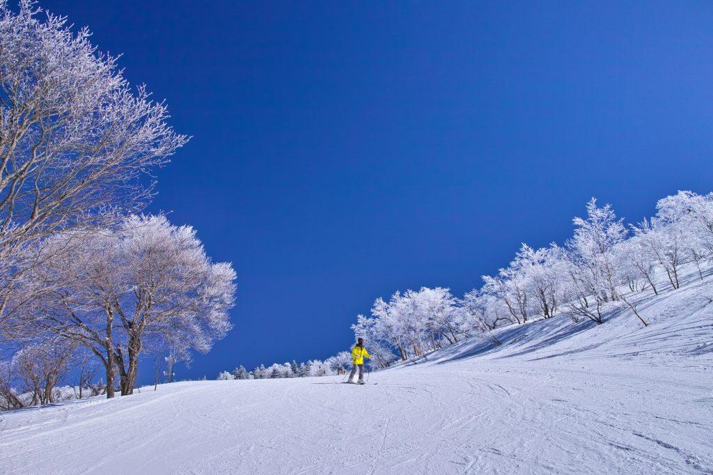 休日はスキーですリゾートバイト
