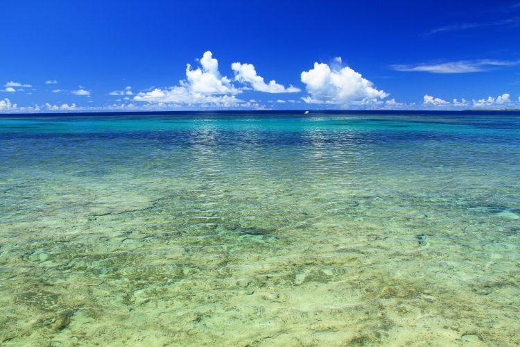 沖縄の海へ行こうよ