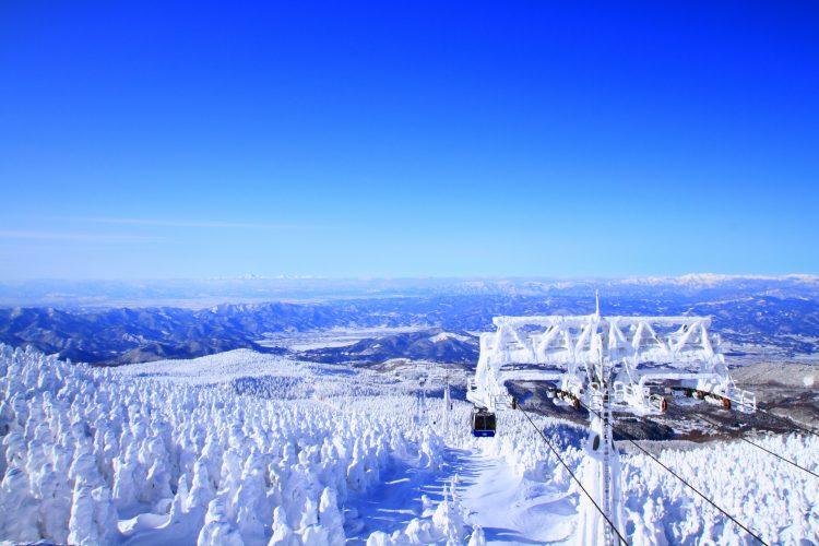 蔵王温泉スキー場モンスター